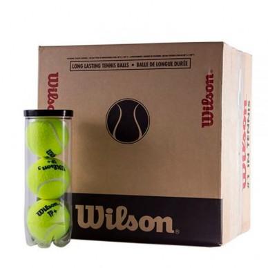Cajón Pelotas Wilson Padel Tp Tball 16 X 3 unidades