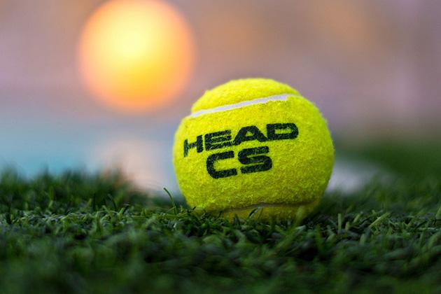 pelotas-head-cs
